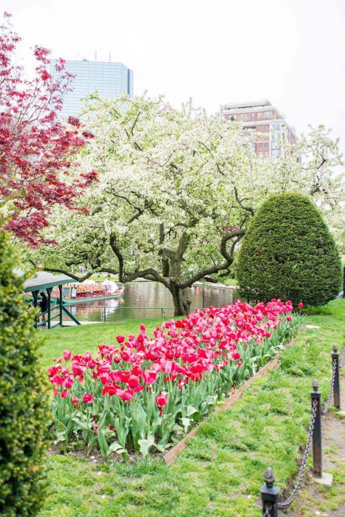 LovePlayingDressup-Neha-Gandhi-FloralDress-Boston-Spring-OOTD-Petite-Tulips-9