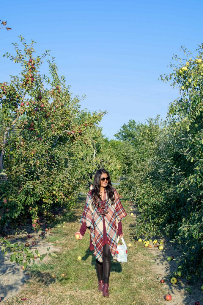 love_playing_dressup_jc_penny_apple_picking-13