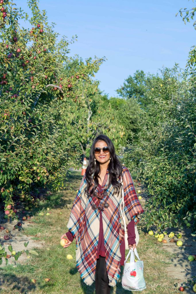 love_playing_dressup_jc_penny_apple_picking-14