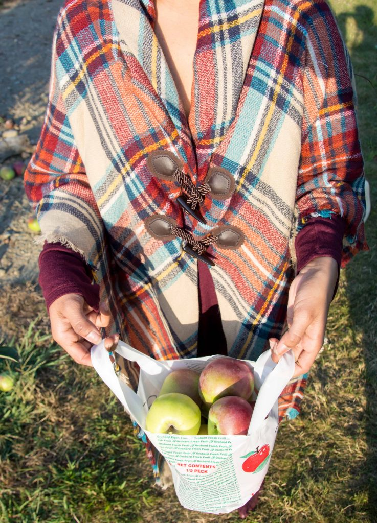 love_playing_dressup_jc_penny_apple_picking-8