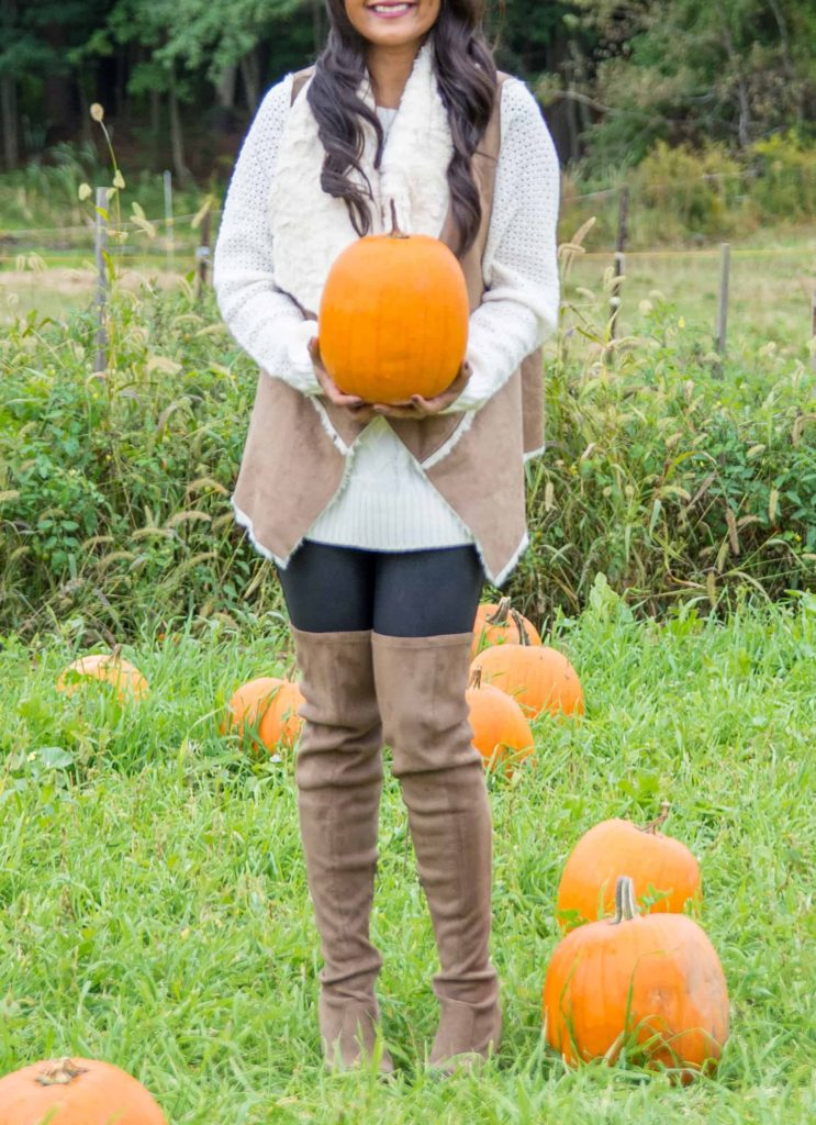 loveplayingdressup-jcpenny-pumpkin-5