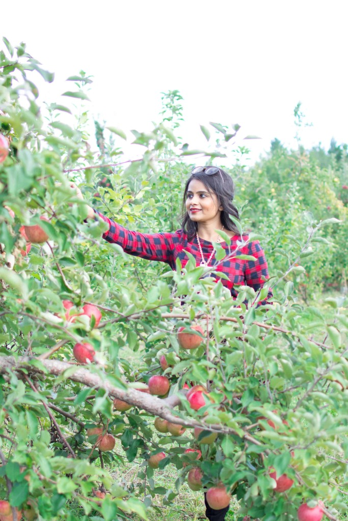 Loveplayingdressup-ootd-neha-gandhi-plaiddress-stellamccartney-otkboots-applepicking2