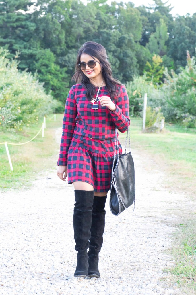 Loveplayingdressup-ootd-neha-gandhi-plaiddress-stellamccartney-otkboots-applepicking5