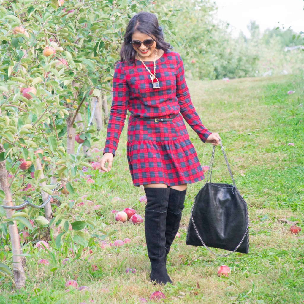 Loveplayingdressup-ootd-neha-gandhi-plaiddress-stellamccartney-otkboots-applepicking7