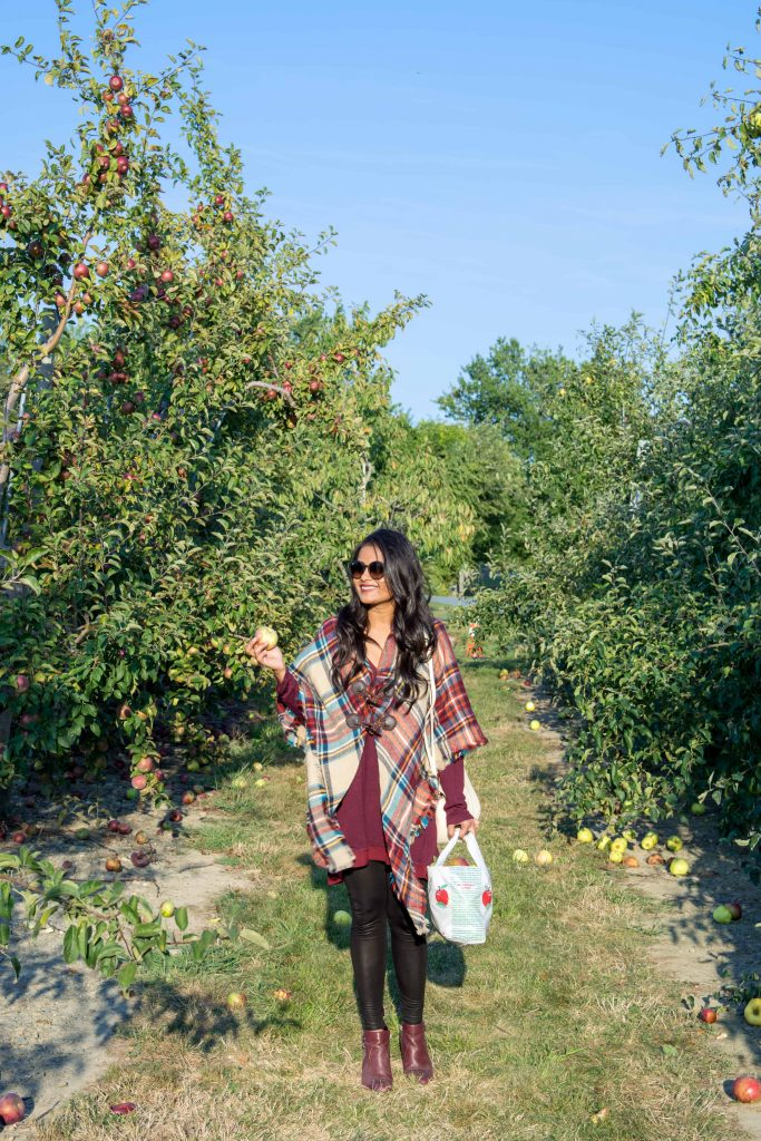love_playing_dressup_jc_penny_apple_picking-12