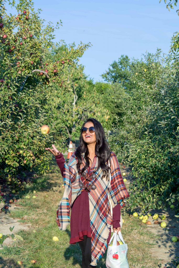 love_playing_dressup_jc_penny_apple_picking-15