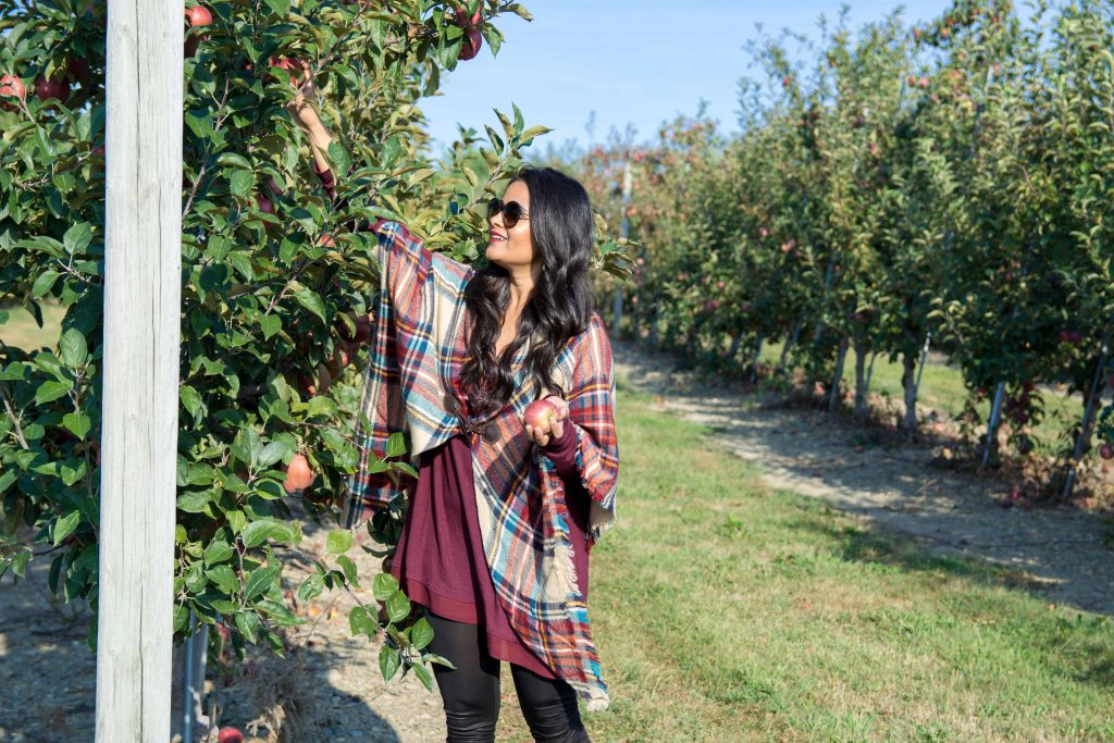 love_playing_dressup_jc_penny_apple_picking-3