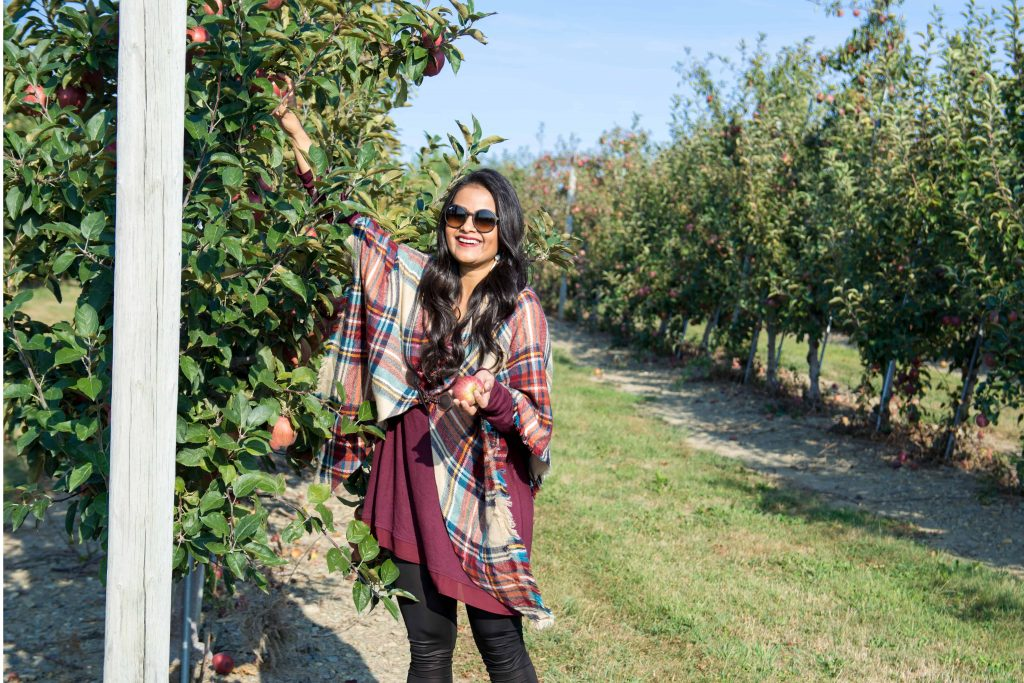 love_playing_dressup_jc_penny_apple_picking-4